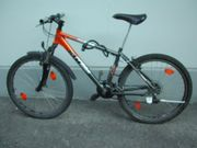 Fahrrad und Kiki Anhänger FLOHMARKT