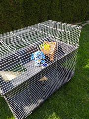 Käfig Doppelstöckig für Kaninchen Meerschweinchen