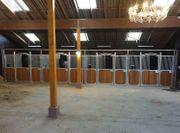 58 Pferdebox Birmingham Pferdestall Stall