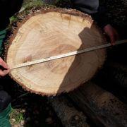 Aus Eichenholz Bohlen Dielen Bretter
