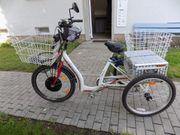 eBike Dreirad für Erwachsene 24