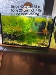 Verkaufe 2 Aquarien bitte Beschreibung