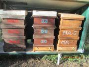 Bienenbeuten DN