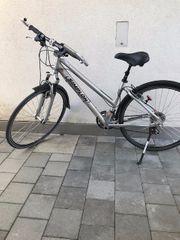 Damen Simplon Citybike