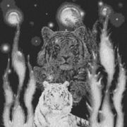 Vorlage für Ministeck Weltall Tiger