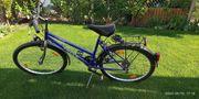 Damen Fahrrad Update 13 07