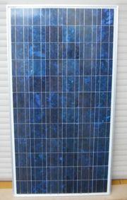 Solarpanel CONERGY CP 155 155Wp
