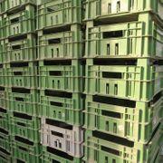 50 Kisten Gemüsekisten Lagerkiste Stapelkisten