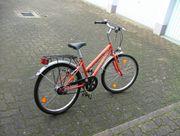 Jugend-Fahrrad und Kinder-Fahrrad