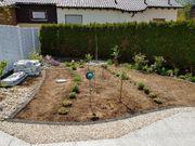elektrischer Rasenmäher gut erhalten