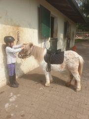Ponykurs für Kinder