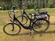 2x E-Bike Zwillinge