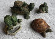 Deko Schildkröten für Haus und