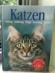 Buch Katzen Pflege Ernährung Rassen
