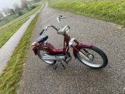 Piaggio Boxer Mofa Moped Oldtimer