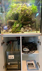 Meerwasser Aquarium Eheim incpiria Marine