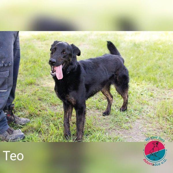 Teo - das Geschenk Gottes
