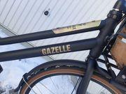 Gazelle Heavy Duty