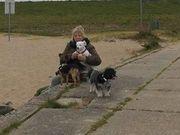 Biete familiäre Hundebetreuung für Ihre
