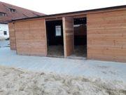 Pferdebox Offenstall nähe Ippinghausen frei