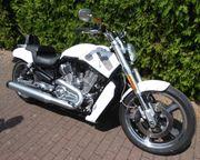 Harley Davidson V-Rod Muscle Rarität