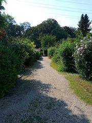 Suche Garten in Mannheim-Neckarau
