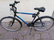 Trecking-Fahrrad 28 Zoll Pegasus KT