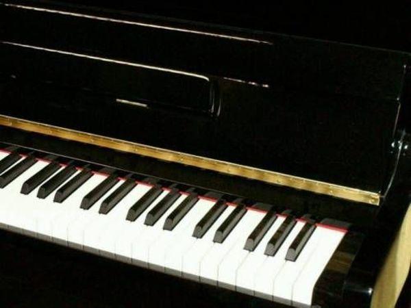 Klavierspieler Akkordeonspieler