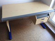 MOll Schreibtisch Kiefer blau