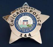 Suche USA-Polizei-Metallabzeichen