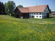 Suche Bauernhaus zum Kauf Weiterführung