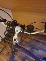Damen E- Bike