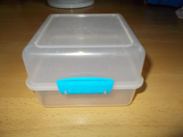 Lunch Cube Brotdose Fesperdose von