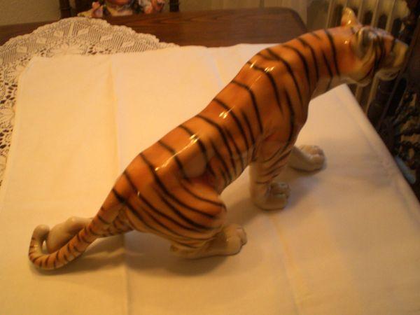 Der große schleichende Tiger Royal