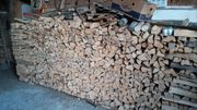 Buchenbrennholz