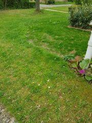 Suche Gartengrundstück