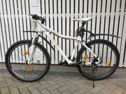 Carver LimitedPure Mountainbike