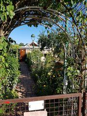 Wunderschöner Kleingarten