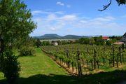 Grundstück in Ungarn am Balaton