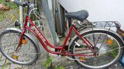 Pegasus Fahrrad 26 Zoll an