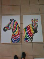 Leinwandbild Zebra Bunt