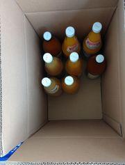 Acht Flaschen Fruchtsaft ohne Zucker