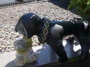 Hundehalsbänder und Hundeleinen