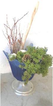 Töpfe bepflanzt