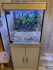 Aquarium Set mit Unterschrank