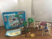 Playmobil Pferdekoppel 5227