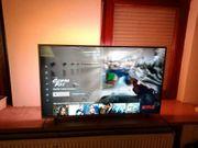 Philips 43PUS8105 LED-Fernseher 108 cm