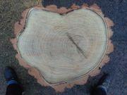 Baumscheibe 35x4 cm Robinie Holzscheiben