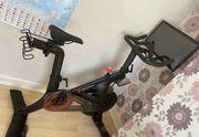 Peloton Bike - einwandfreier Zustand