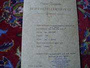 Perser mit Zertifikat